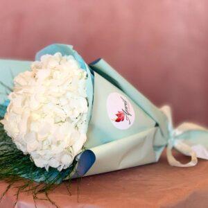 Hortensie alb sau lila