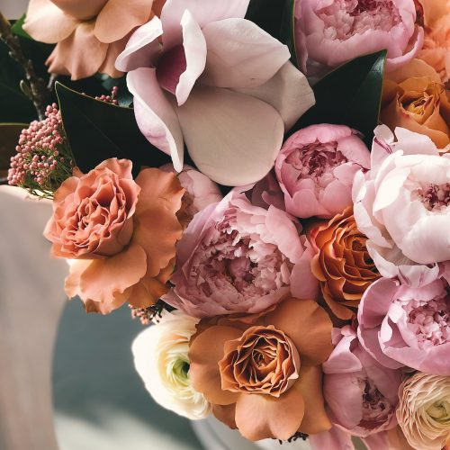 beautiful-birthday-blossom-931162